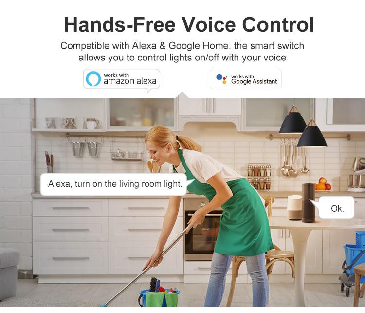 DUALR2 voice control